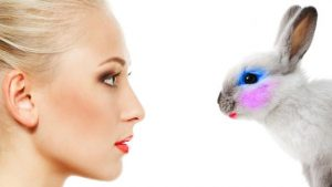 why is makeup tested on animals