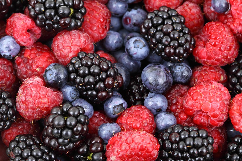 Eating healthy meals and fruits such as berries can strengthen your hair loss recovery.